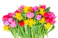 Картинка colorful, тюльпаны, flowers, tulips, bouquet