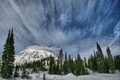 Картинка зима, лес, небо, облака, снег, горы, природа