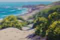 Картинка песок, море, волны, природа, побережье, горизонт, кусты