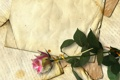 Картинка ретро, роза, строки, старая бумага, письма, засушенный цветок