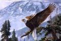 Картинка зима, лес, снег, деревья, птица, орел