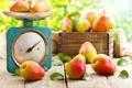 Картинка ящик, весы, груши, листики