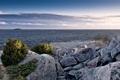 Картинка камни, растительность, залив, Финский