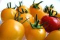 Картинка овощи, томаты, помидорки