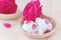 Картинка роза, цветок, мармелад, сладость, сахарная пудра