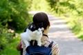 Картинка кошка, девушка, фон, обои, настроения, брюнетка