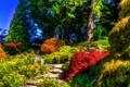 Картинка деревья, обработка, сад, Великобритания, кусты, Sizergh Castle Garden
