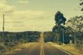 Картинка дорога, небо, облака, деревья, горизонт, Бразилия, линия электропередач